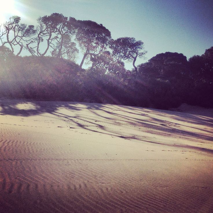 #transkei #paradise #coast #beach #iphonephotos #mdumbi