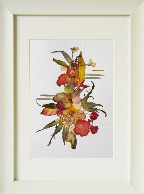 Abstract Art Flowers Herbarium Real Pressed Flowers