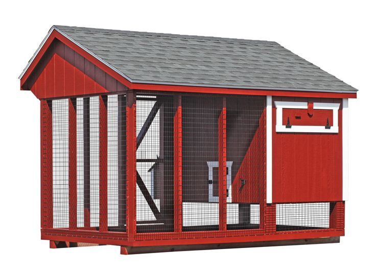 Backyard Chicken Product: Chicken Coops - All-In-One 6x10 Chicken Coop (12-15 chickens) - from My Pet Chicken
