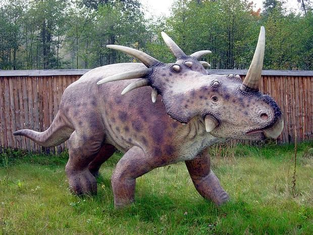 10 Pointed Facts About Styracosaurus | Mental Floss