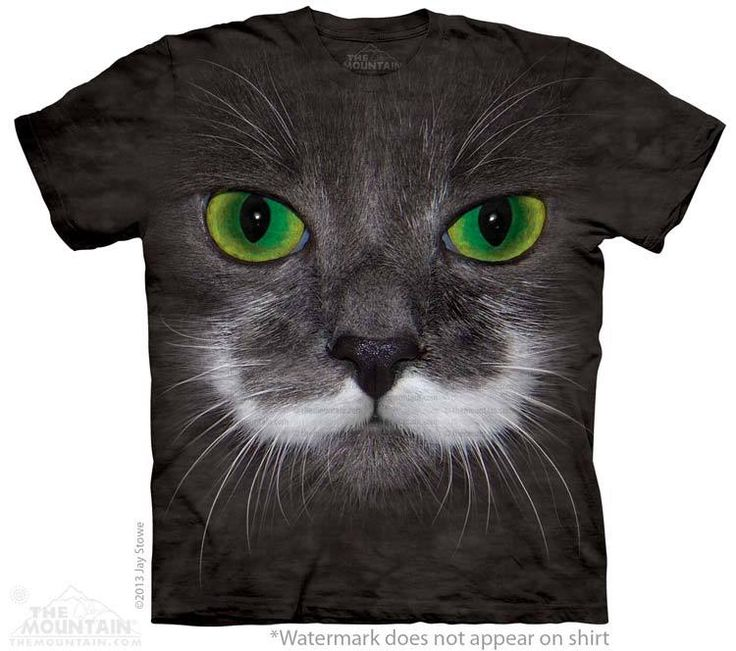 Hamilton the Hipster Cat T-Shirt - Click image to see hundreds of different animal t-shirts #themountaintees