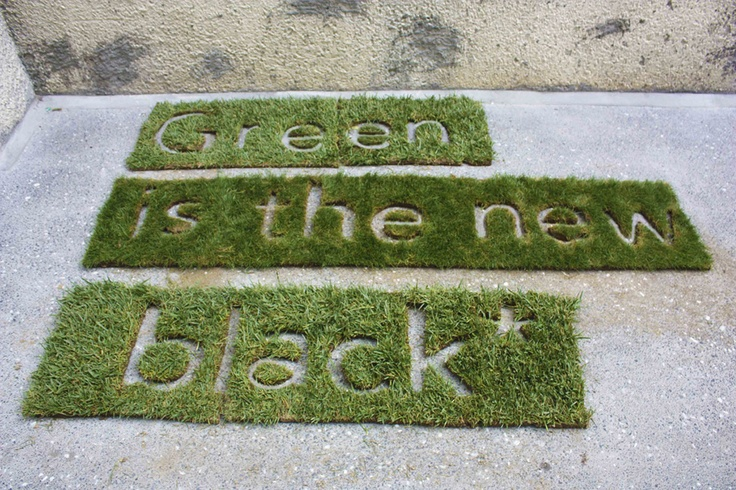Anna-Rae Morris, Green is the new black installation