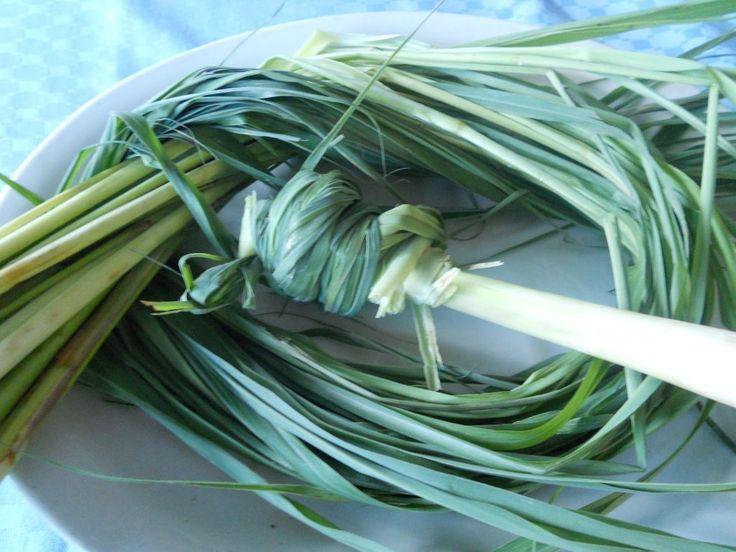 Connaissez-vous les principales vertus de la citronnelle? http://www.tropics-magazine.com/feel-good/tropics-magazine/ via @TropicsMagazine