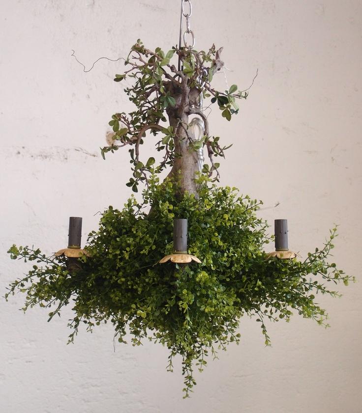 136 best Canopy Designs Lighting Custom images on ...