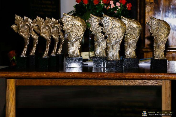 8 grudnia br. w Lubuskim Muzeum im. Jana Dekerta w Gorzowie Wlkp. odbyła się uroczystość wręczenia Nagród Kulturalnych Marszałka Województwa Lubuskiego oraz nagrody za wspieranie i promowanie życia kulturalnego regionu Złoty Dukat Lubuski.