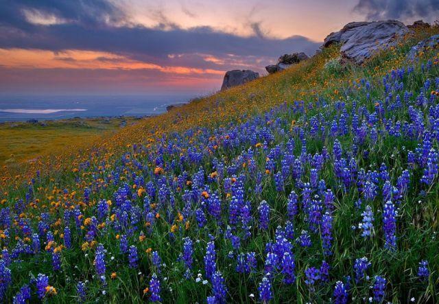 Tranquilidade e paz nas montanhas do Texas...
