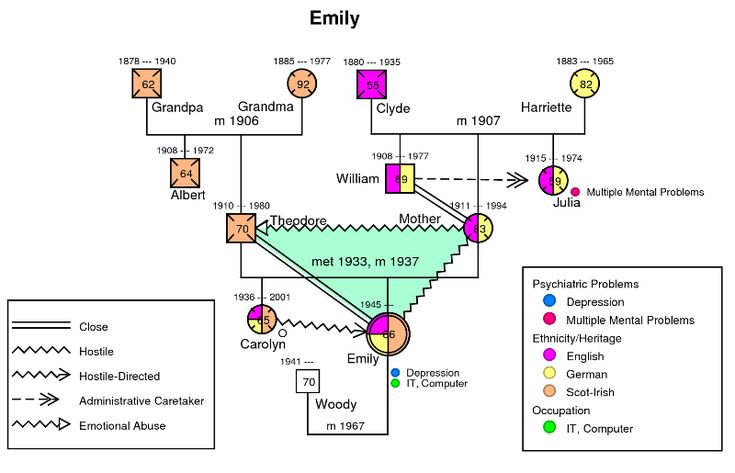 genogram themes About family maps a family map or genogram shows all the living and dead people who genetically, emotionally, and legally comprise a family.