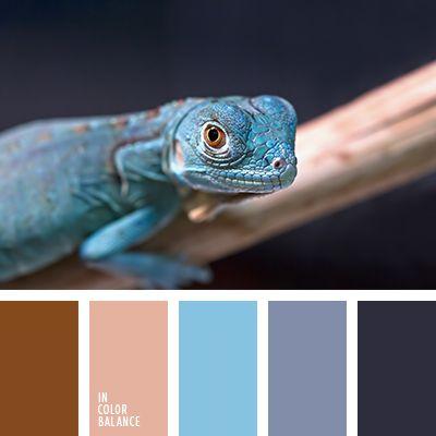 бежевый, голубой, оттенки голубого, подбор цвета для гостиной, подбор цвета для дизайнера, синий, фиолетовый, цвет дерева, цвет шерсти, цветовое решение для декора, цветовое решение для ремонта, яркий голубой, яркий синий.