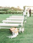 vintage table rentals white wedding benches Photography by Meghan Elise at St Regis Monarch Beach_Dana Point_CA--