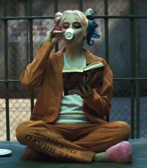 Harley Quinn Suicide Squad Ladies Custom Print Prison Costume Halloween Cosplay…