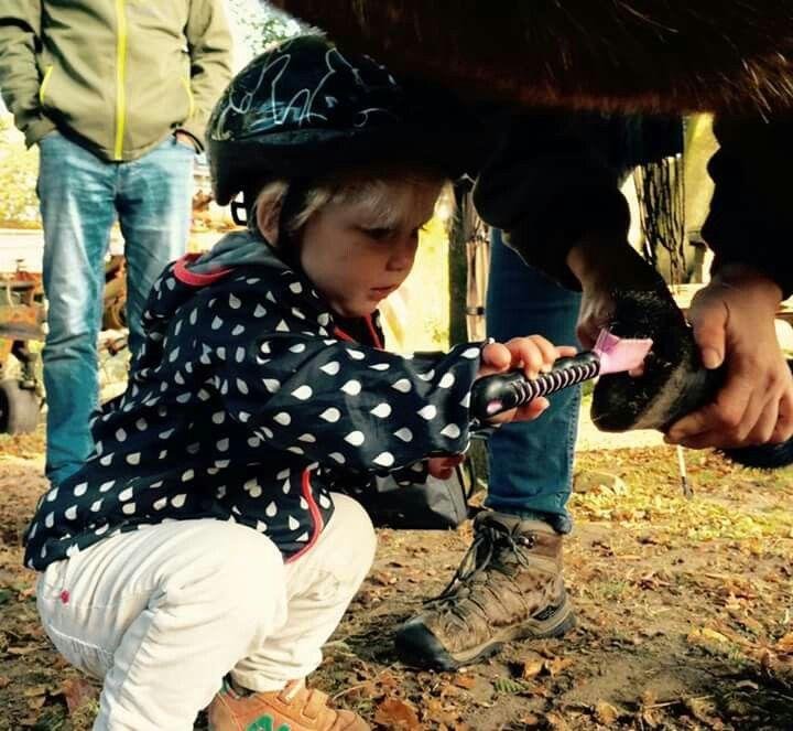Klein paardenmeisje
