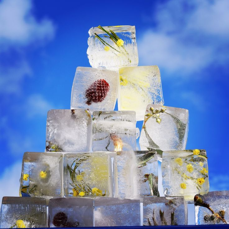 Our ice with native flowers and seed/plant in them looked amazing #wedding #ice #weddingideas