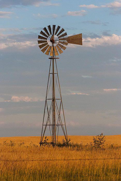 Historic windmill on the shortgrass prairie near Keota in Eastern Colorado