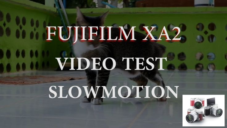 FUJIFILM XA2 VIDEO TEST SLOWMOTION - CAT VIDEO