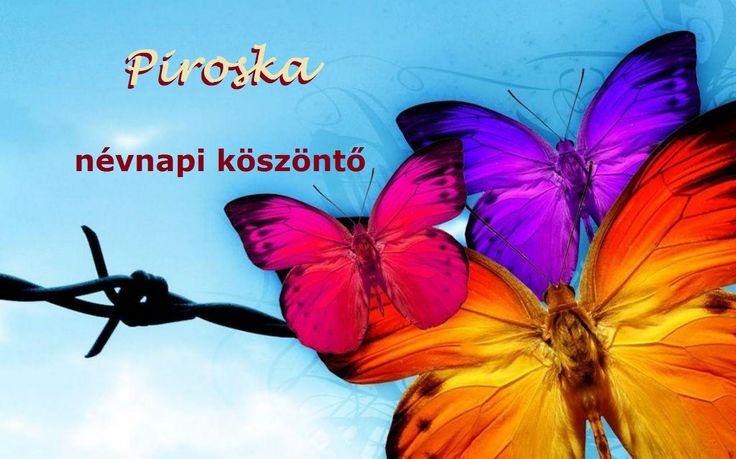 Névnapi verses köszöntők -Piroska napra