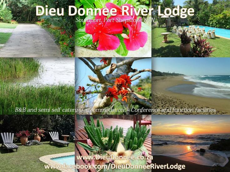 Dieu Donnee River Lodge is situated in Southport, Port Shepstone. We offer B&B, semi self catering accommodation, function and conference facilities available. Our tropical garden is the perfect venue for any outdoor events. www.DieuDonnee.co.za www.Facebook.com/DieuDonneeRiverLodge