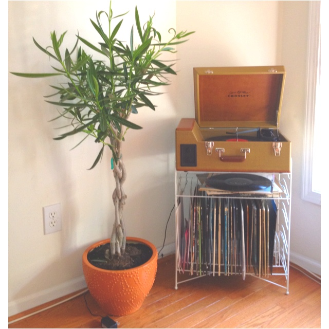 8 best for the records images on pinterest furniture homes and