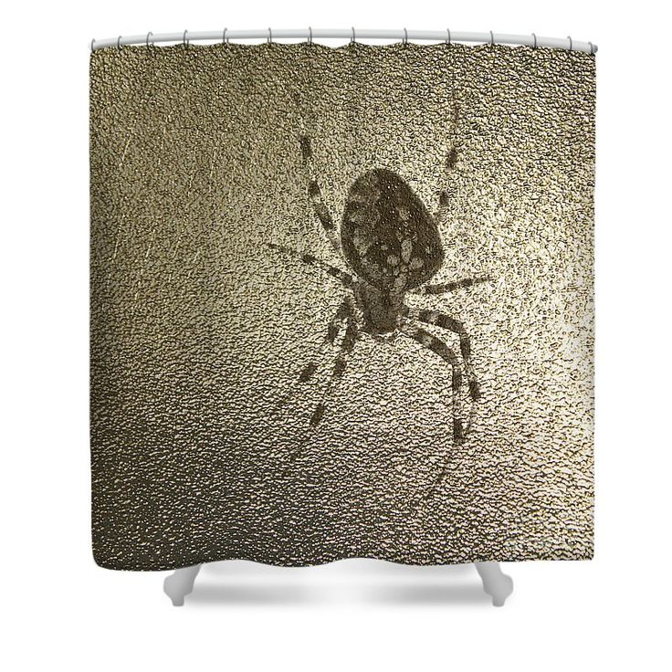 Golden Cross Spider Shower Curtain by Sverre Andreas Fekjan.  This shower…