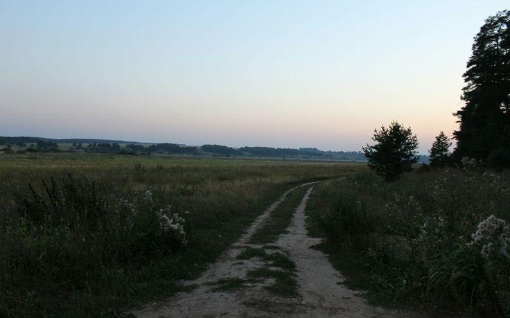 Дорога в сумерках
