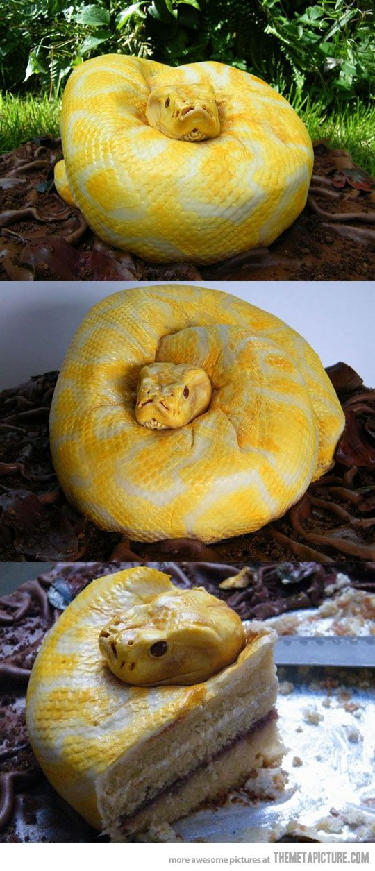 Just a cake?: Thoughts, Happy Birthday, Cakes Ideas, Hard Time, Awesome Cakes, Wedding Cakes, Snakes Cakes, Good, Birthday Cakes
