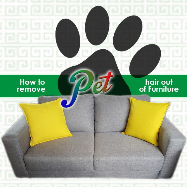How to remove pet hair from your furniture. If you have cats or dogs (or both!), I hope for your sake you've got a leather sofa! More info on our website. Link in BIO.