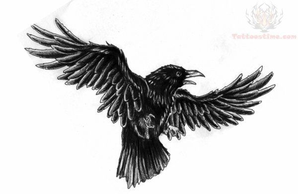 Google Image Result for http://www.tattoostime.com/images/247/flying-black-crow-tattoo-design.jpg