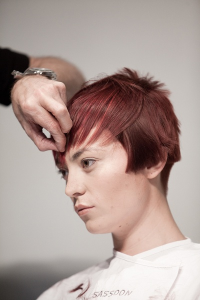 sassoon color & cutting