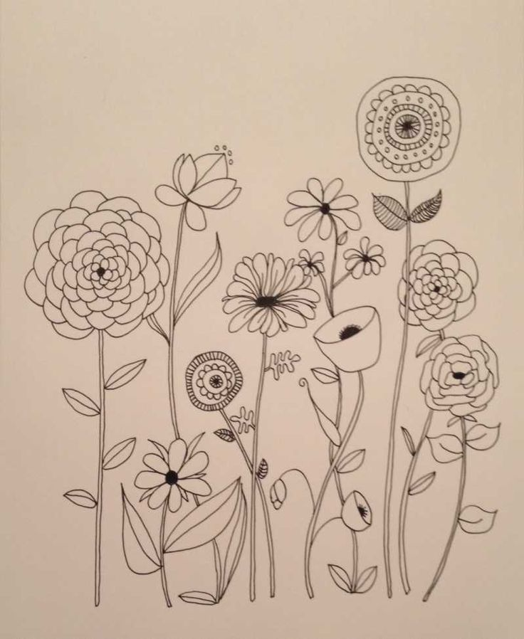 Basic Line Designs : Best flower drawings ideas on pinterest