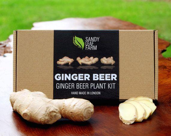 ★ Notre bière de gingembre Kit ★  Avec ce kit, vous serez en mesure de faire les 2L de bière de gingembre véritable alcoolique. Oubliez pas à payer