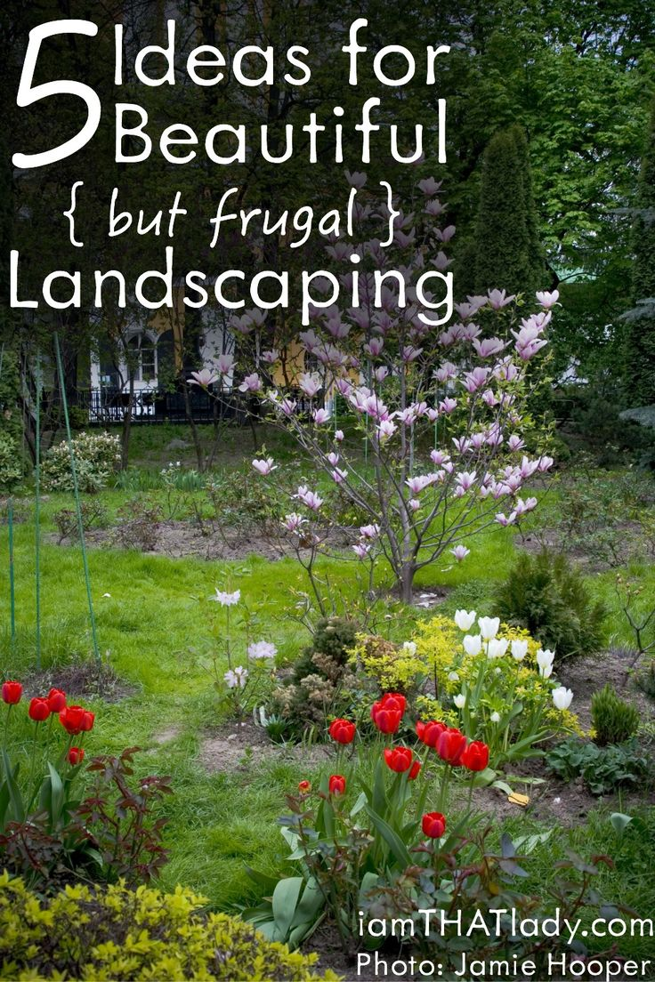 5 Ideas for Beautiful  but Frugal  Landscaping. 17 best images about Landscaping on a Budget on Pinterest