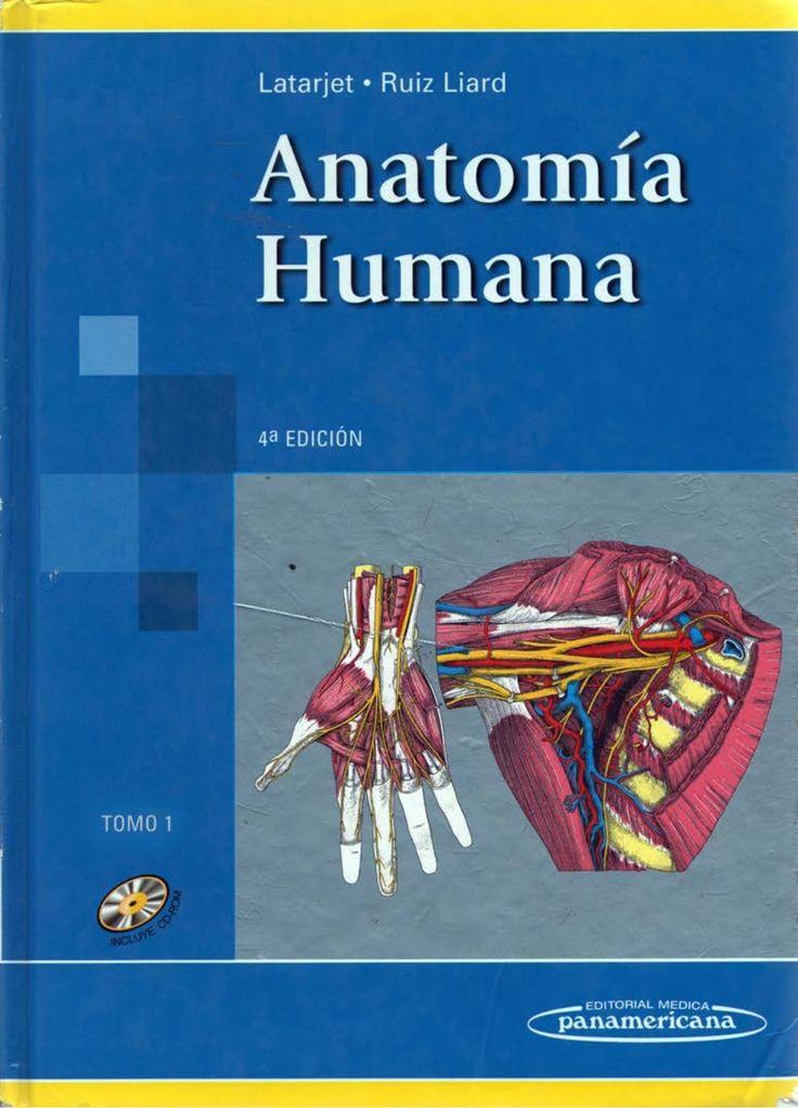 Mejores 95 imágenes de Anatomía 1 en Pinterest | Anatomía humana ...