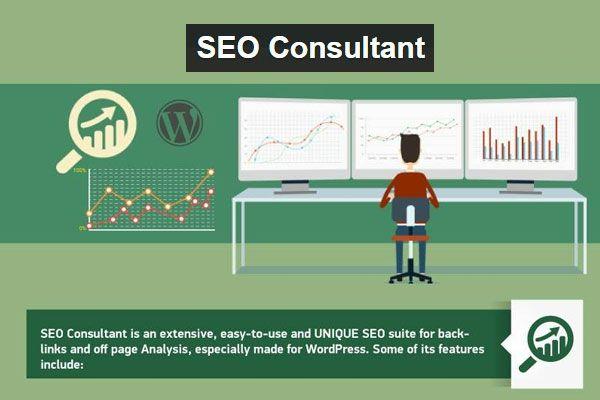 SEO Consultant WordPress Plugin