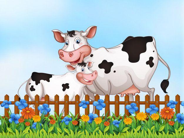 Farm Animals Cartoon Humor Set Cartoon Cow Animal Clipart Cow Illustration