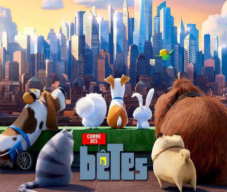 Comme Des Betes Bande Annonce Film 8758 9663 Comme Des Betes 2 Film Complet The Secret
