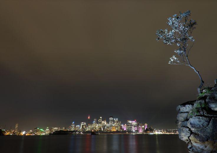 Sydney Skyline by Night from Cremorne Point Ferry Wharf