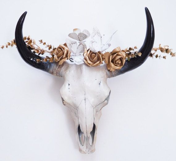 Crâne de vache Animal Skull crâne taxidermie par hodihomedecor
