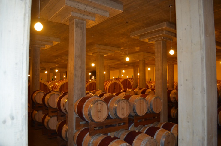 Altesino Winery in Brunello di Montalcino Italy Had a wonderful stay here. Thank you, Guiddo