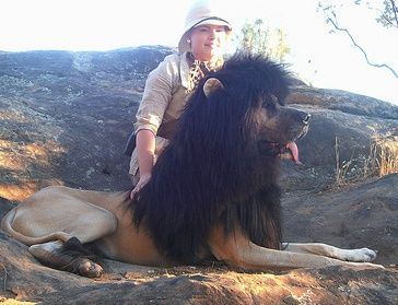 Dog Costume Ideas for Halloween: King of the Jungle - Lion Costume for Dogs