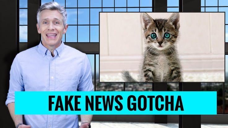 Fake News Gotcha - How to Spot Fake News Stories: Nate Clark Show