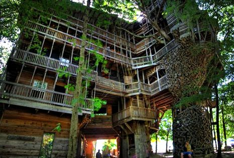 Biggest Tree House