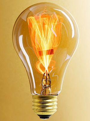 """Balafire Flicker"" Carbon Fillament Light Bulb - 15 Watt...for the front porch"
