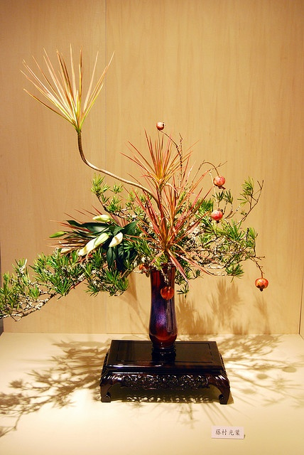 Ikebana Ohara with part of a house plant | Flickr - Photo Sharing!