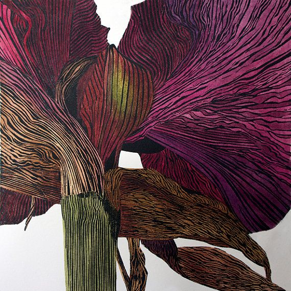 Dark amaryllis linocut print in hand by Irene Helen MacKenzie