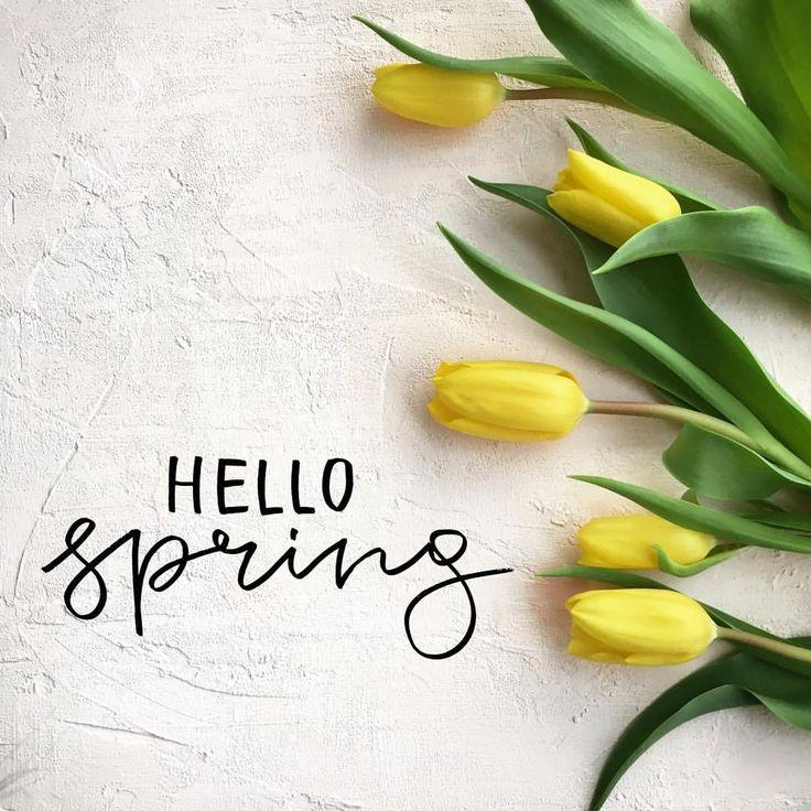 28 отметок «Нравится», 1 комментариев — MUZA (@muza_olesya) в Instagram: «Привет весна Мастерю фотофоны для работы и #flatlay ✨ так теперь есть повод сделать красивые…»