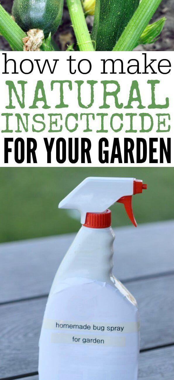 ea13f87c3d8ecebeda9463fabfd20f88 - Diy Organic Pest Control For Gardens
