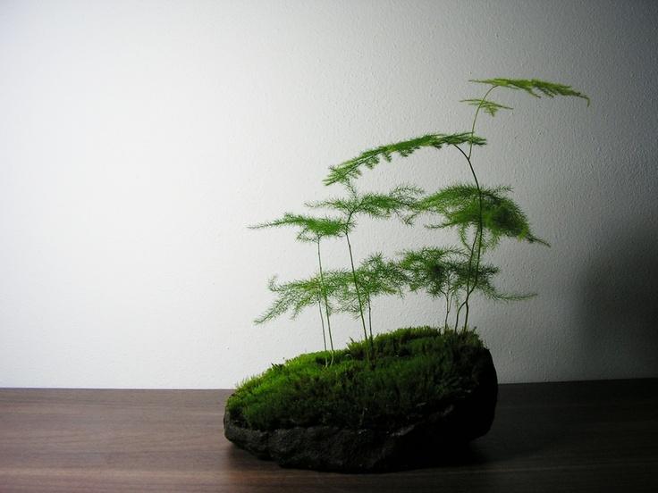 http://www.facebook.com/kusamono?ref=hl