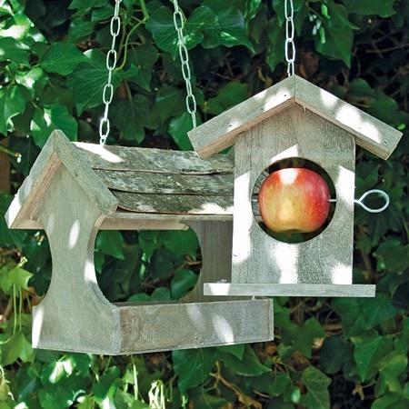 Hanging Bird Feeders with apple