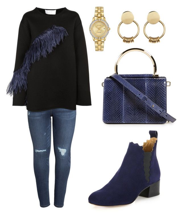 """""""Untitled #362"""" by cherrytorsha on Polyvore featuring Salvatore Ferragamo, Caslon, Gianluca Capannolo, Chloé, Citizen, SOKO and plus size clothing"""