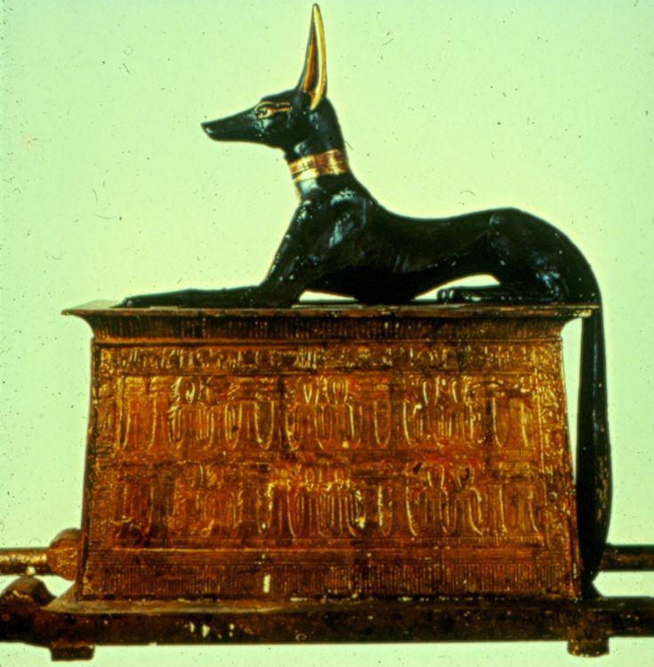 Anubis, ancient Egyptian jackal-headed god-animal.