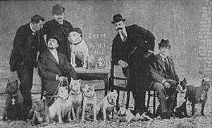 Deutscher Boxer Club 29 March 1896.